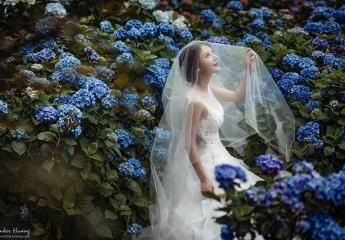 拍婚紗行程規劃, 婚紗景點, 婚紗推薦, 自助婚紗, 拍婚紗行程,繡球花婚紗